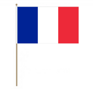 France Country Hand Flag, large.